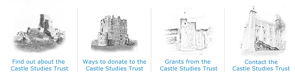 Navigate Castle Studies Trust Website