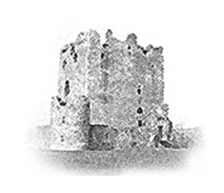 Donate to Castle Studies Trust